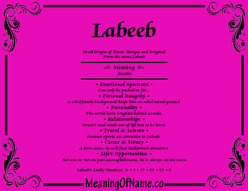 Meaning of Name Labeeb