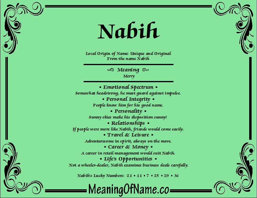 Meaning of Name Nabih