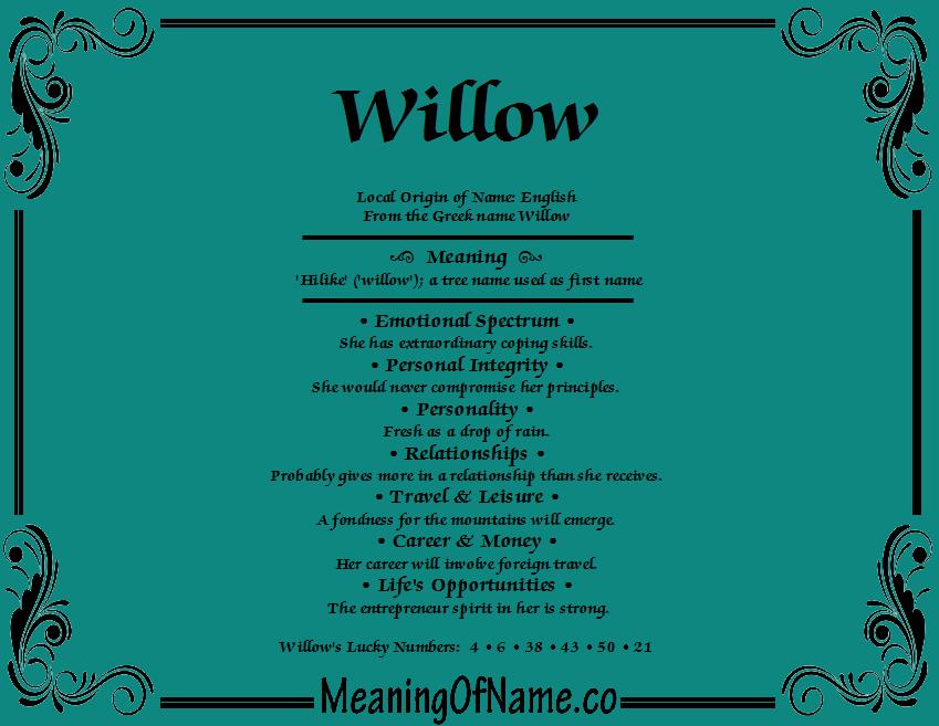 Meaning of Name Willow